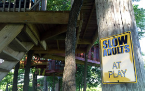 Play Sign at Tree Creations in Geneseo
