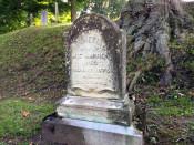 Henrietta Warren's Headstone in Mt. Albion Cemetery