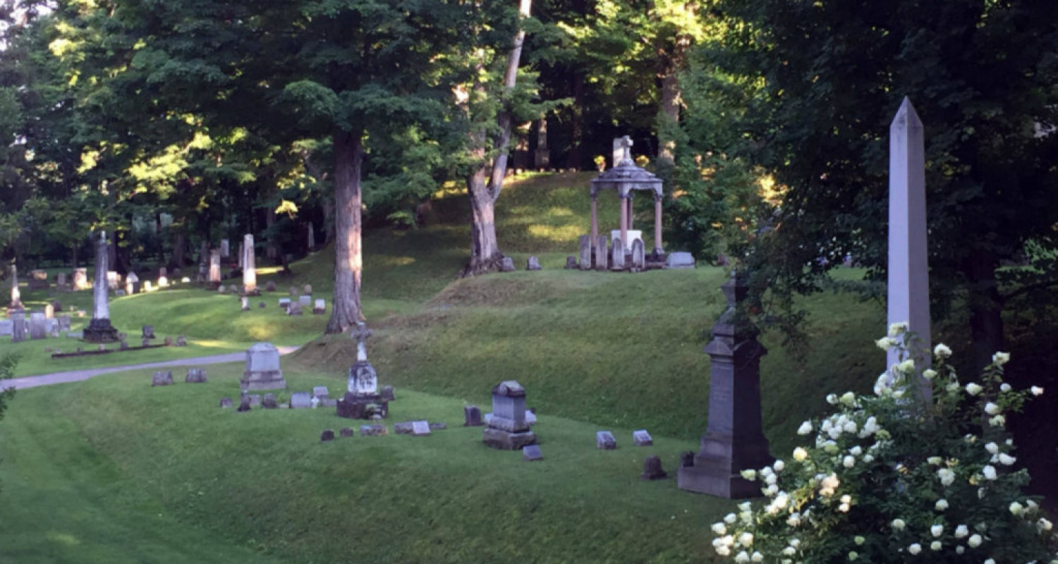 Mt. Albion Cemetery in Albion, NY - Featured Image