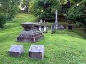 Convington Swan's Burial in Mt. Albion Cemetery