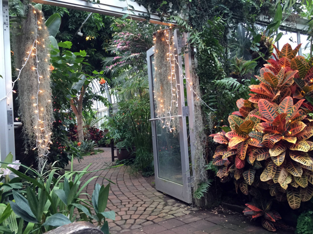 Inside the Lamberton Conservatory in Rochester, New York