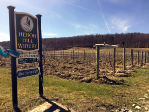 Heron Hill Winery in Hammondsport, New York