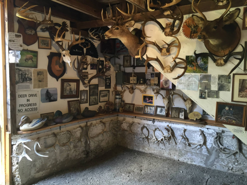 Antler Shed and Whitetail Museum in West Valley, New York