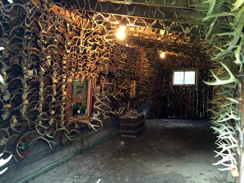 Antler Shed Extension Room in West Valley, NY