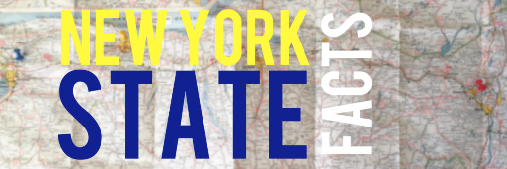 New York State Facts - Banner