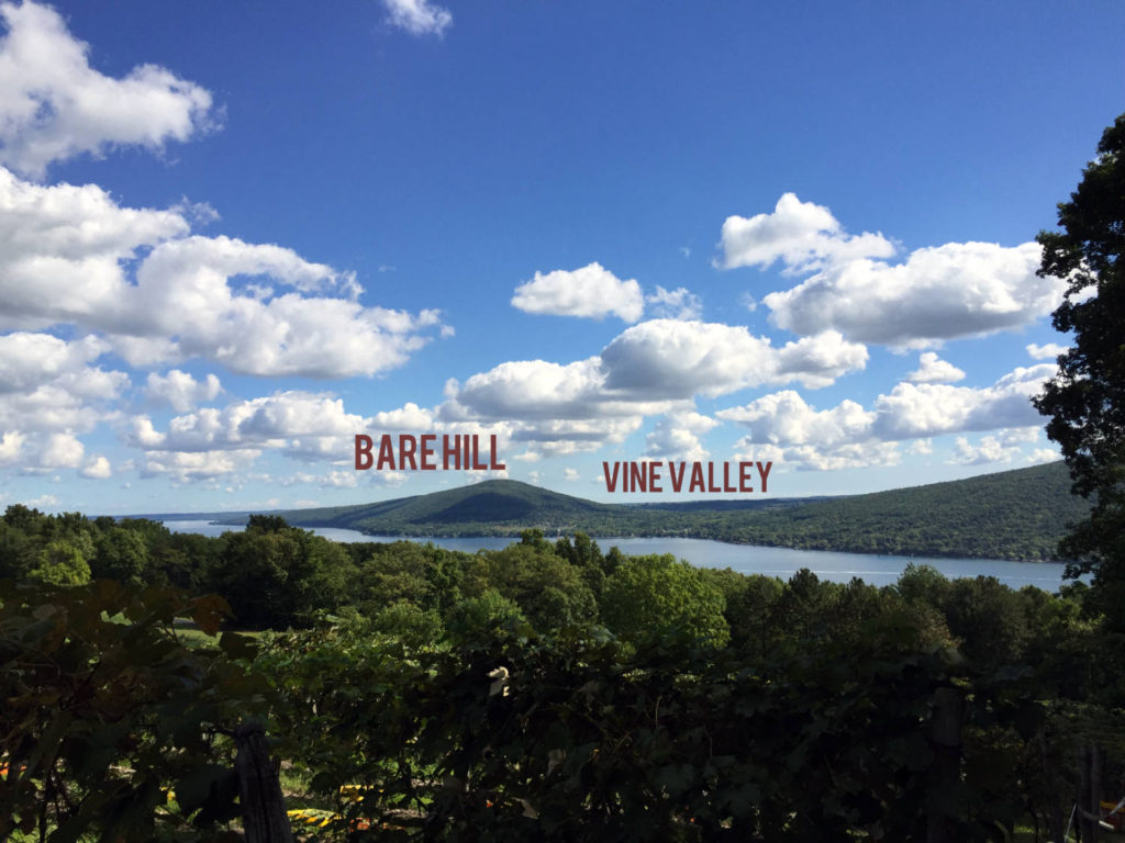 Bare Hill and Vine Valley in Canandaigua, New York