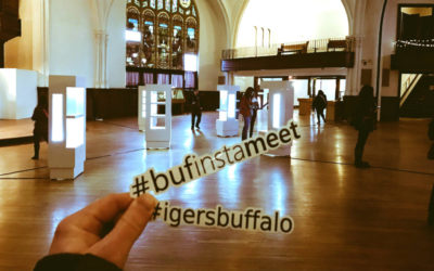 Buffalo Instagram and Karpeles Museum - Featured Image