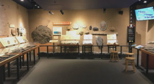 Ordovician Period Exhibit at the Museum of the Earth in Ithaca, New York