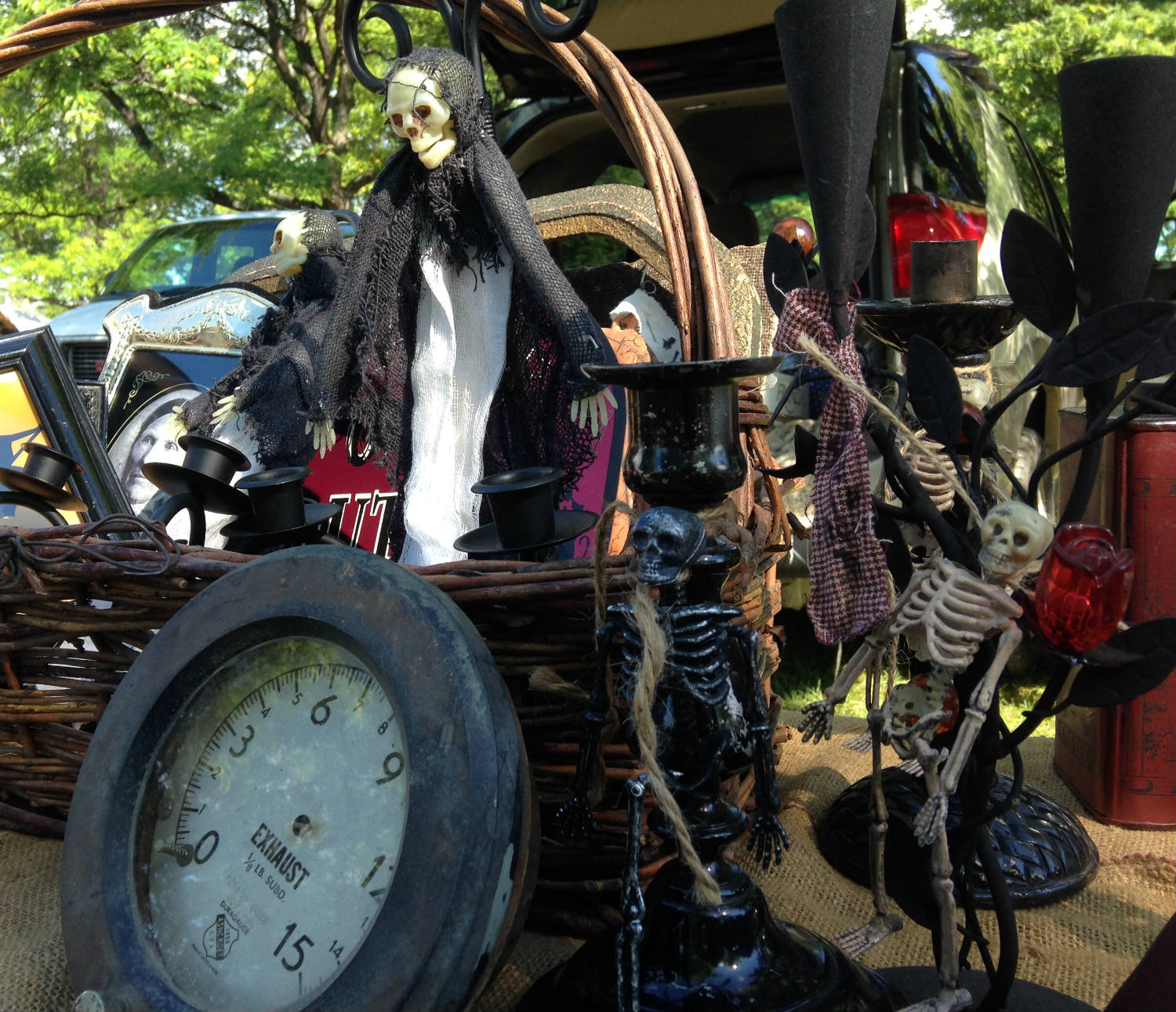 East Avon Flea Market - Skeletons