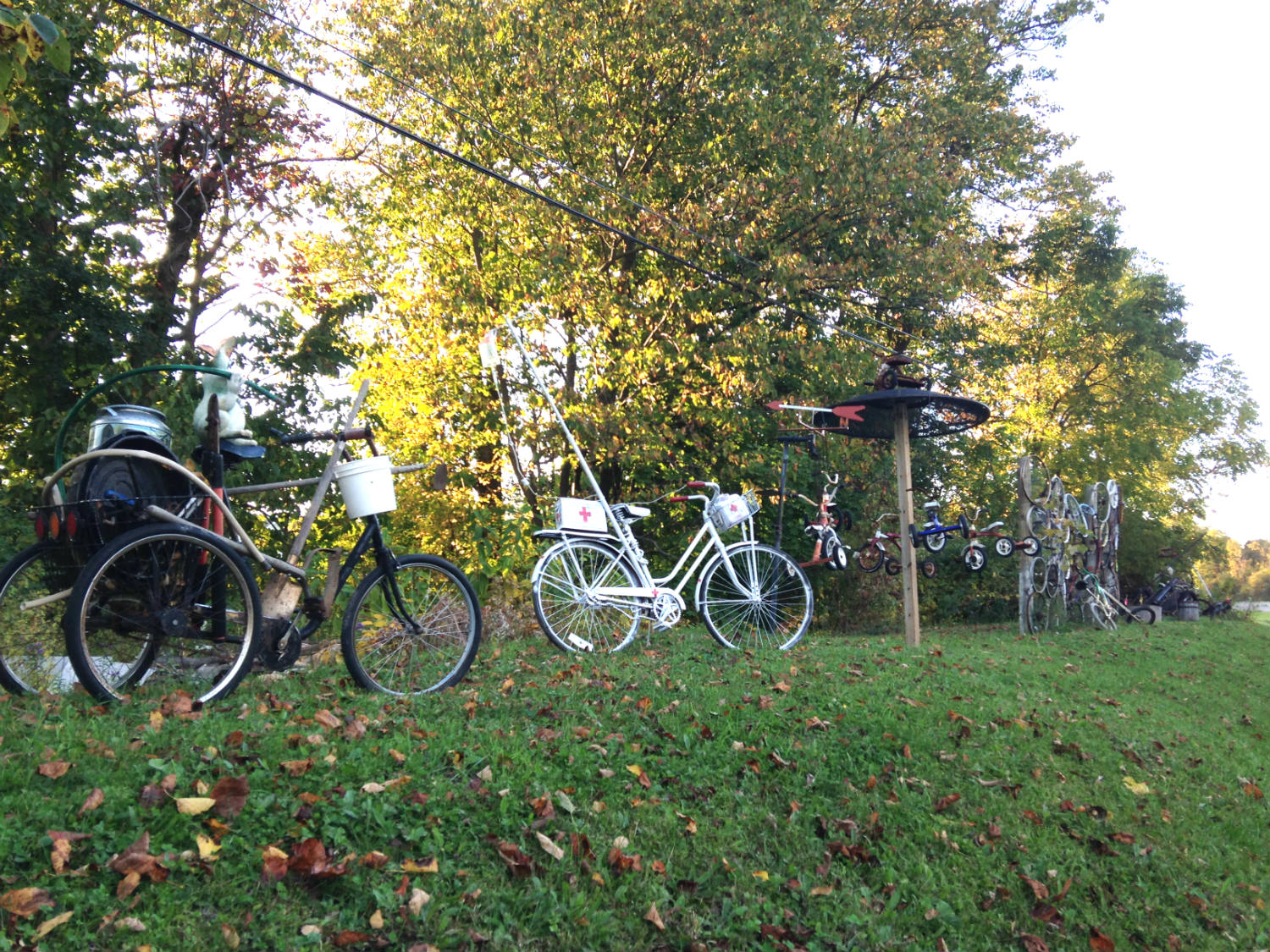Bicycle Art and Yard Sculptures - Palmyra, NY