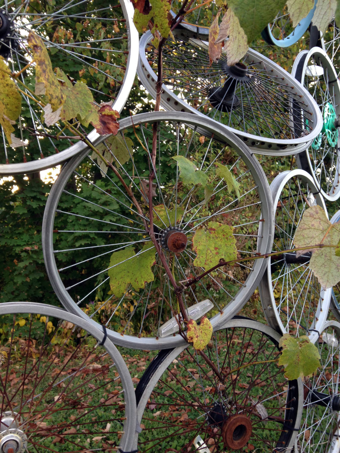 Bicycle Art and Yard Sculptures - Palmyra, NY Wheel Fence Closeup