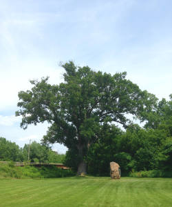 The Torture Tree and Grave Marker of Boyd and Parker in Cuylerville, NY