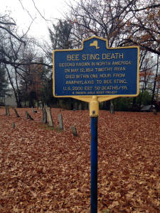 Historical Landmark Sign for Second Known Bee Sting Death near Canandaigua, NY