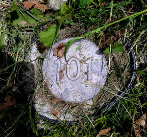 Cemetery Marker 101