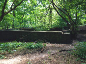 Old Refectory remnants in Maplewood Park
