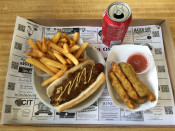 Coney Island Hot Dog and Fries at Rudy's Lakeside Drive In in Oswego