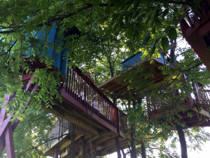 Treehouses in Geneseo, New York