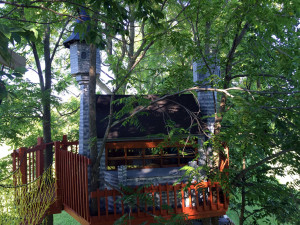 Castle Treehouse in Geneseo