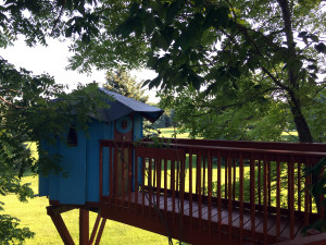 The Tea Room Treehouse in Geneseo