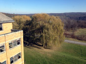 Looking East from atop the former St. Michael's Mission in Conesus, NY