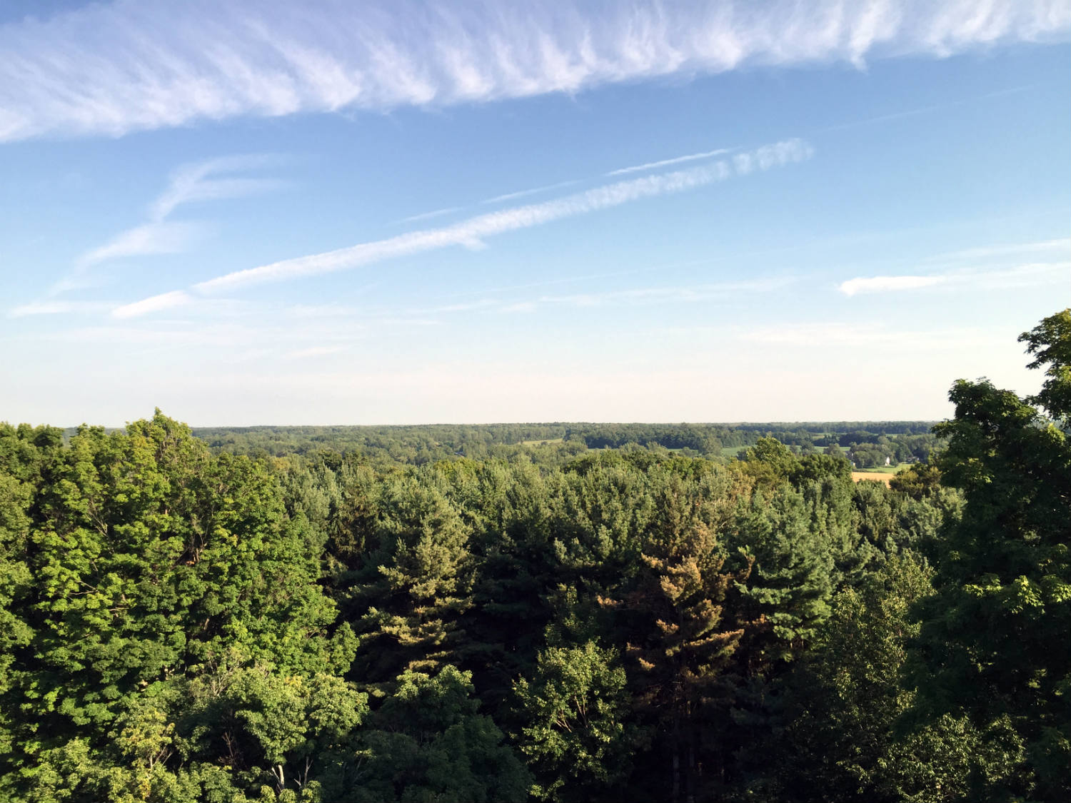 View of Orleans County from atop Mt. Albion Cemetery Tower