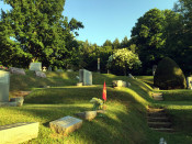 Terraces in Mt. Albion Cemetery