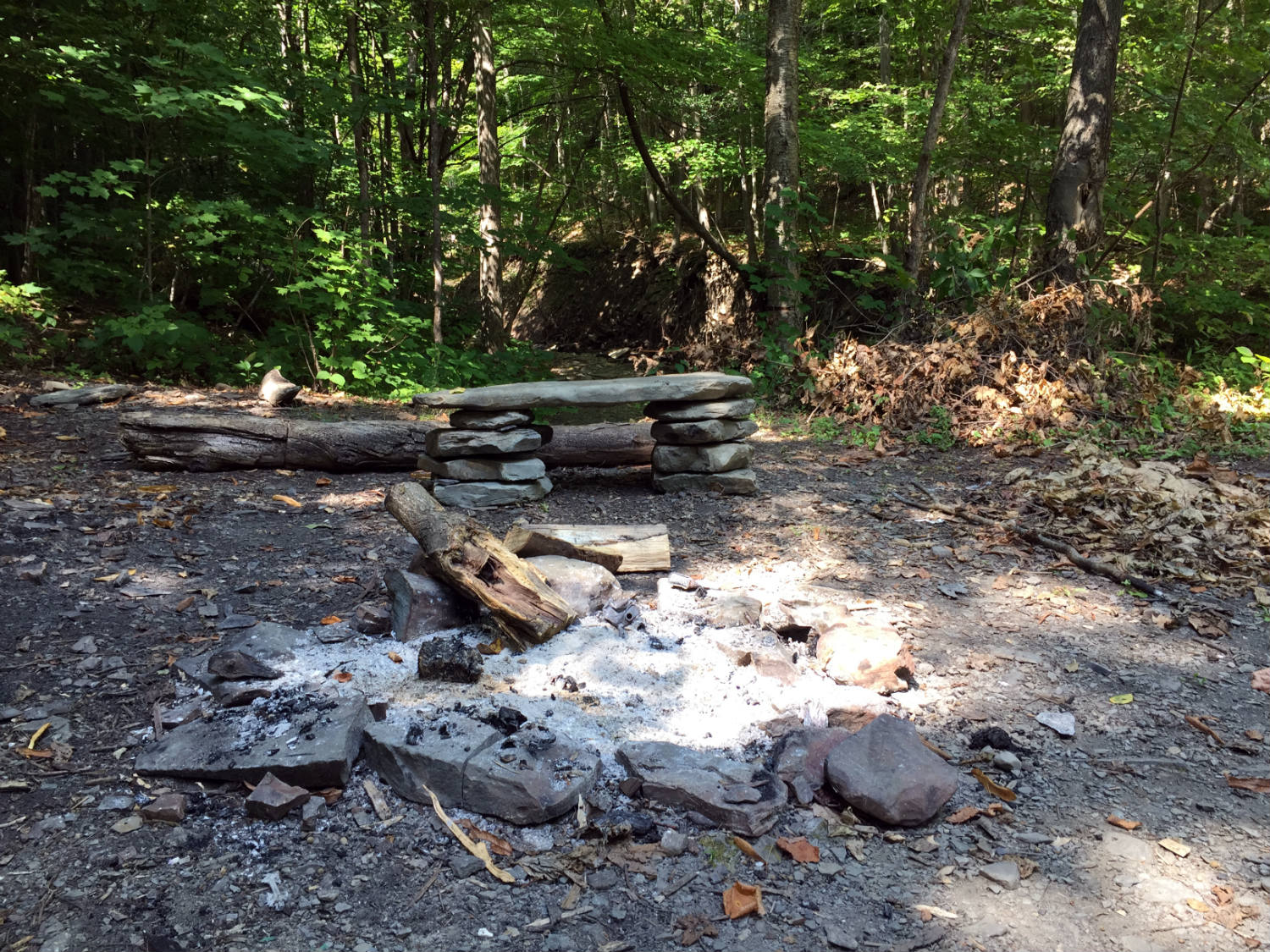 Rock Bench and Campfire on the Trail in Clark Gully