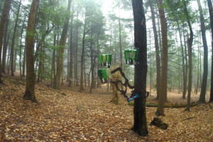 The C Lyon Sculpture Park in Horseheads, New York Bottle Tree