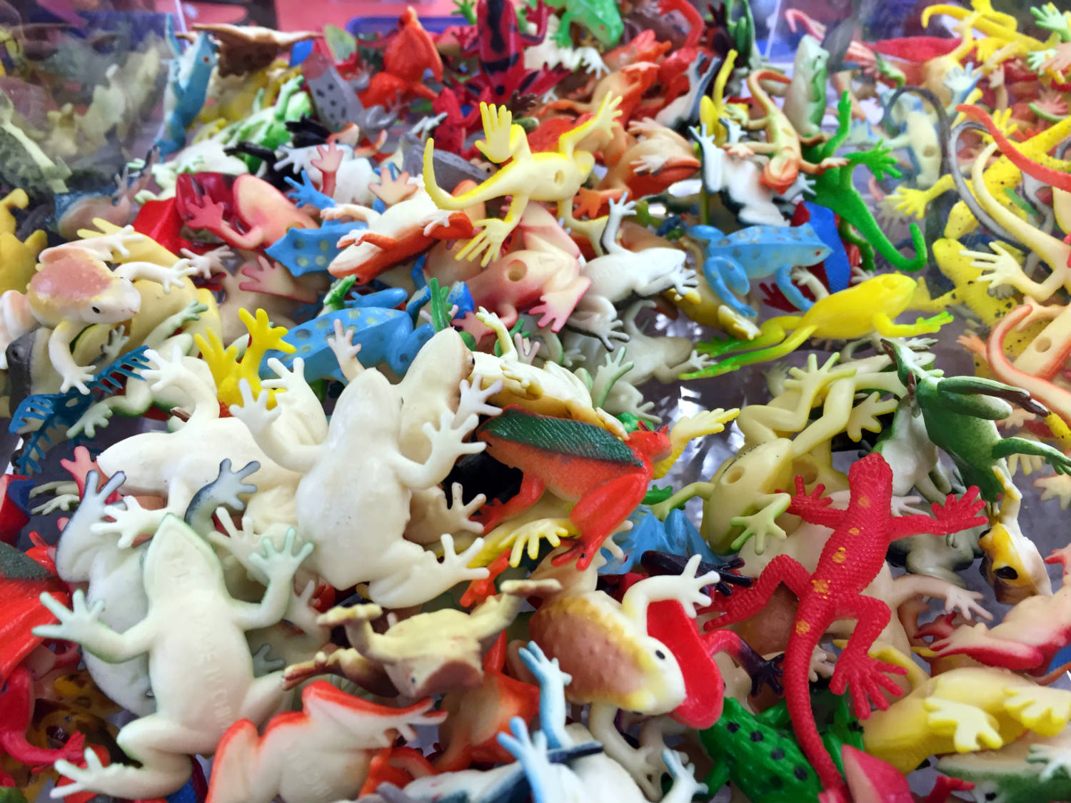 Rubber Frogs at Vidler's in East Aurora, New York