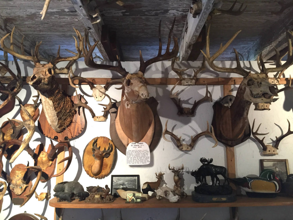 Exhibit at the Antler Shed in West Valley, NY