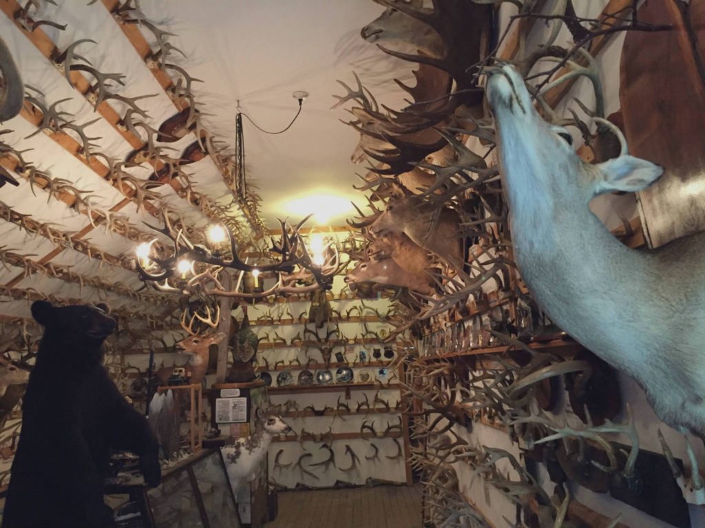 Exhibit Room at the Antler Shed in West Valley, New York