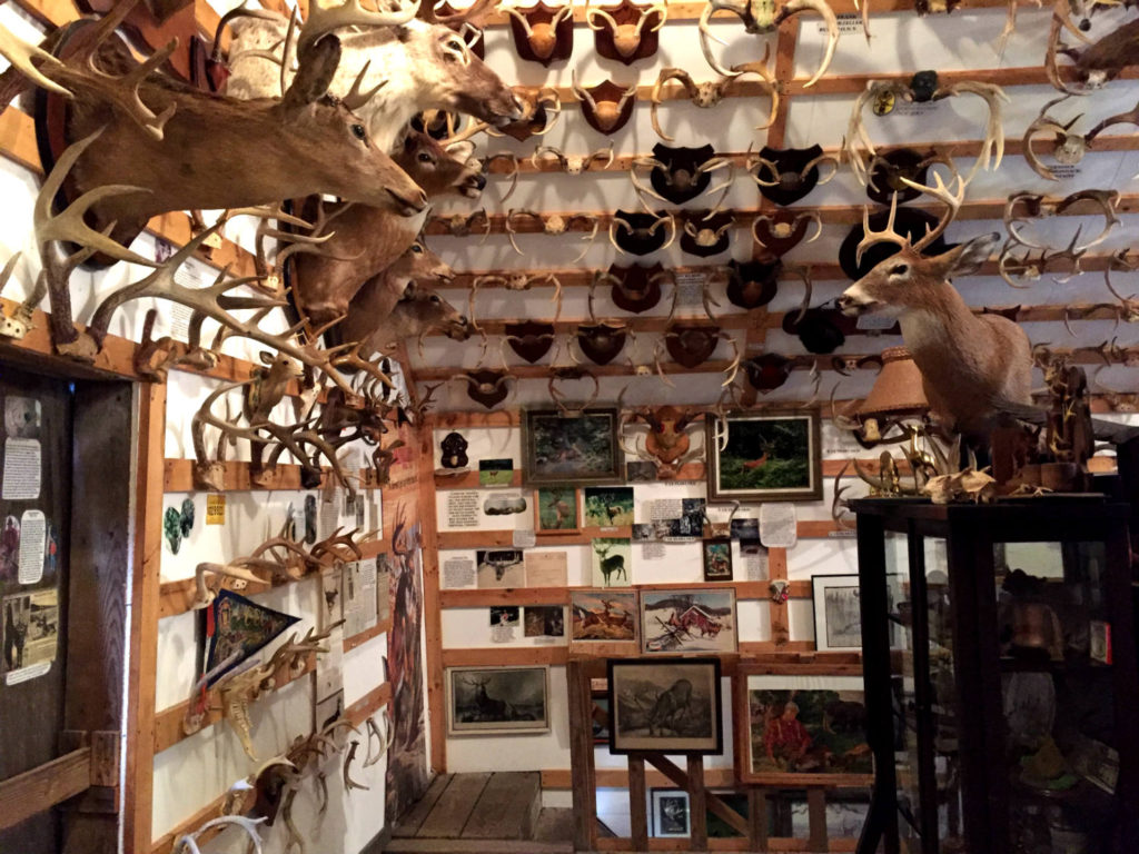 Antler Exhibit Room in West Valley, New York