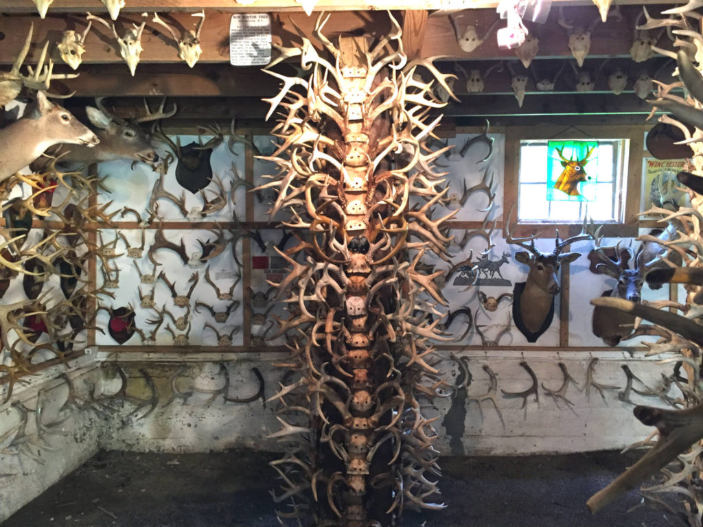Column of Antlers in West Valley, New York