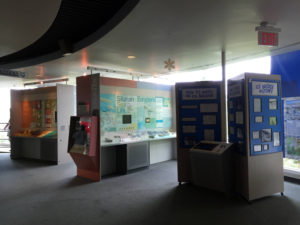 Niagara Falls Discovery Center Museum Exhibit