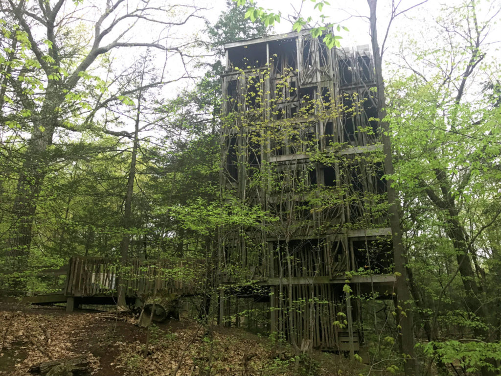 Tree House at the Cayuga Nature Center in Ithaca, New York