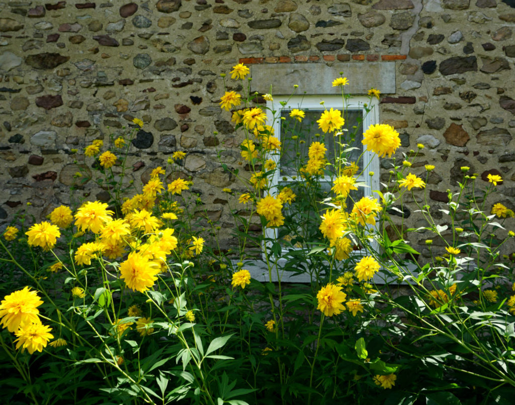 Flowers and Stonework at the Barden Cobblestone Home in Penn Yan, New York