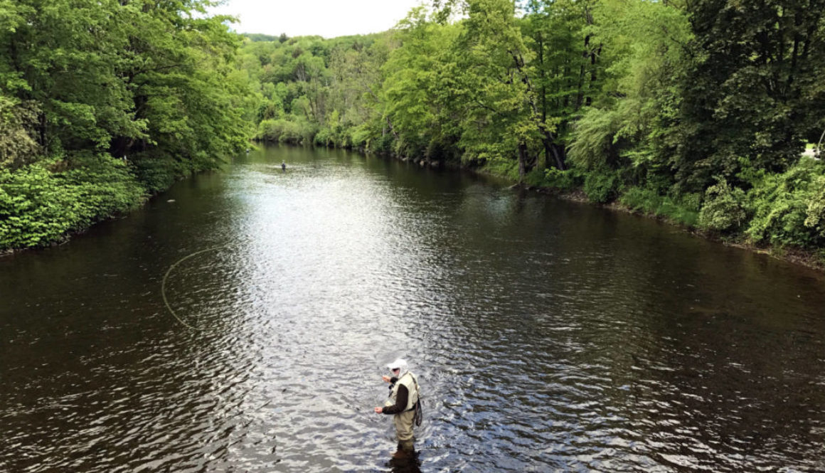 Catskills Fly Fishing Museum and Center - Featured Image