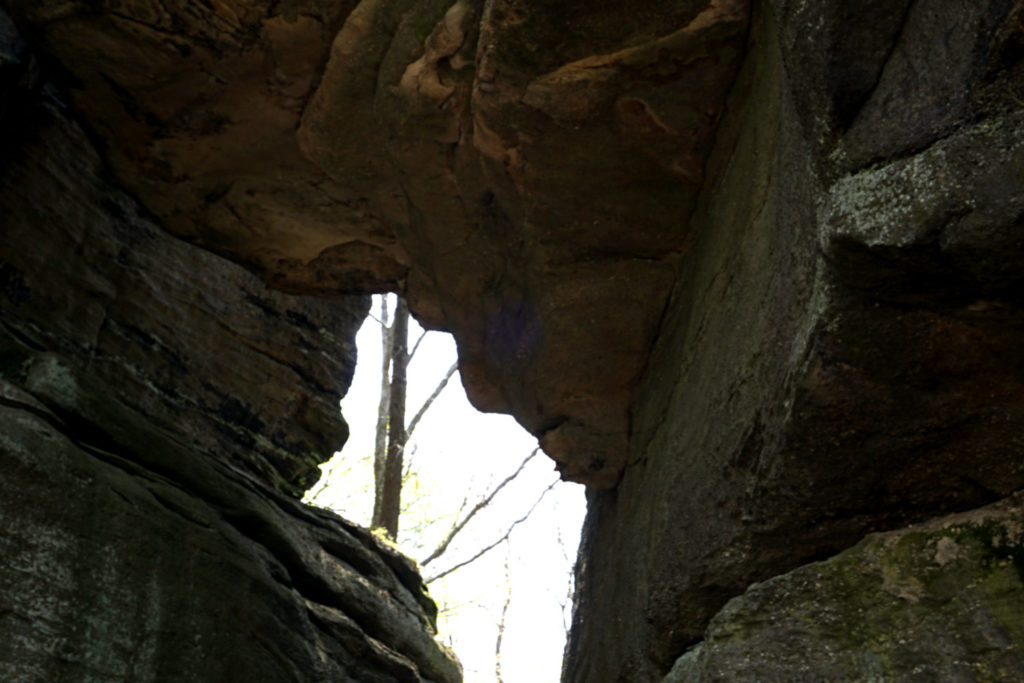 Old Man Face in Rock City Park in Olean, New York