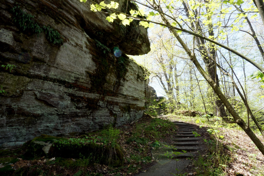 Stairs on Trail in Rock City Park in Olean, New York