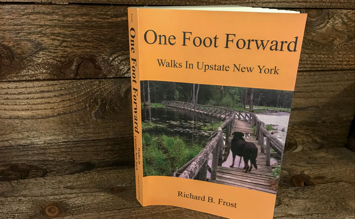 One Foot Forward: Walks in Upstate New York - Featured Image