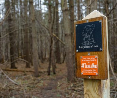 Black Creek Park Fairy Trail - Featured Image
