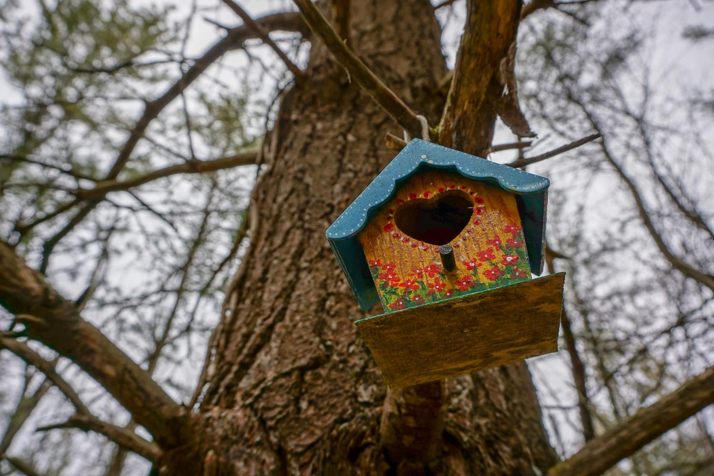 Fairy House in Black Creek Park near Rochester