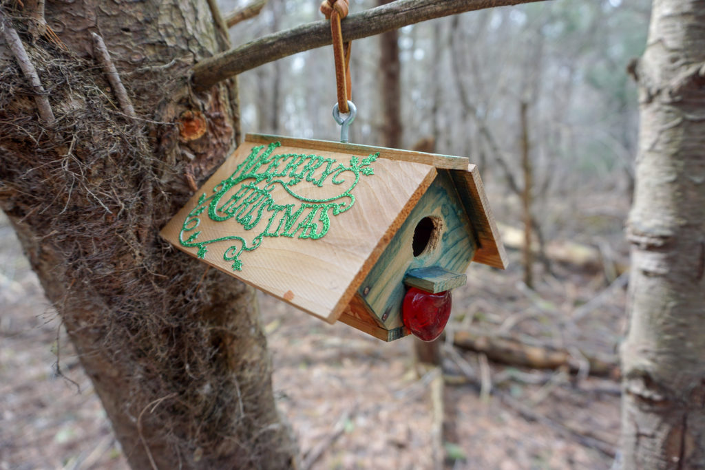 Fairy House on Trail in Black Creek Park in Monroe County