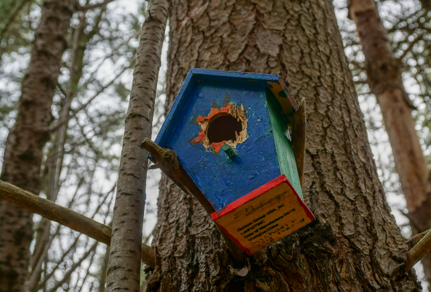 Fairy House on Trail in Black Creek in Monroe County