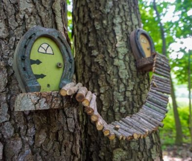 Birdsong Fairy Trail - Featured Image