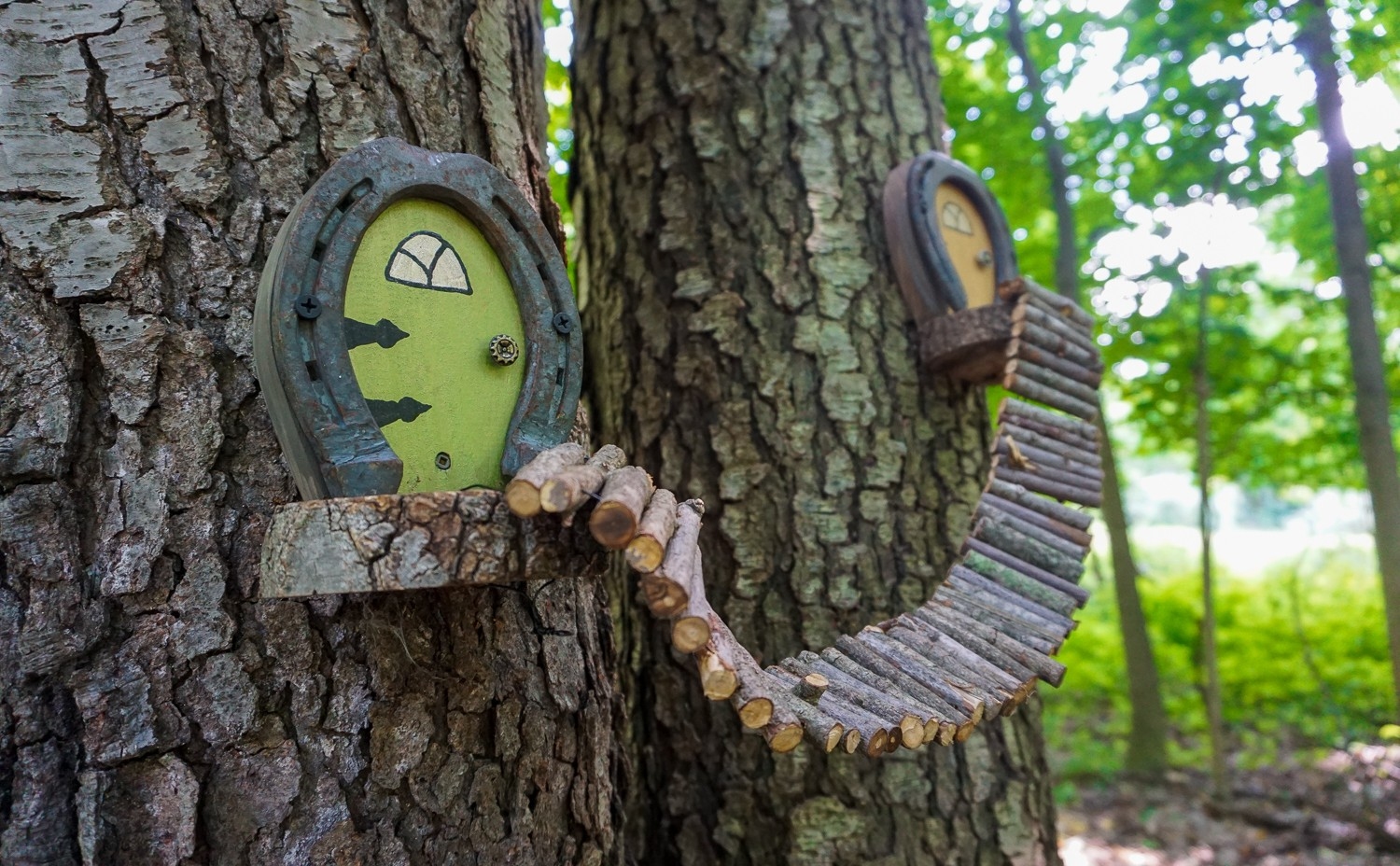 Birdsong Fairy Trail In Mendon Ponds Park Near Rochester