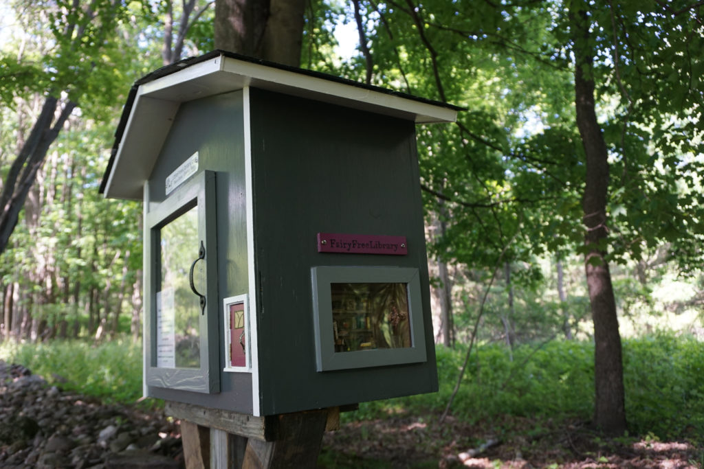 Birdsong Fairy Trail Little Free Library Near Rochester
