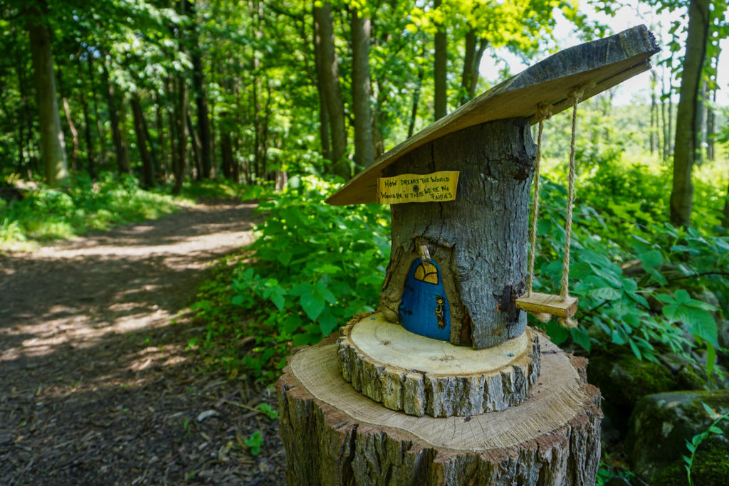 A Fairy House in Mendon Ponds Park in Monroe County