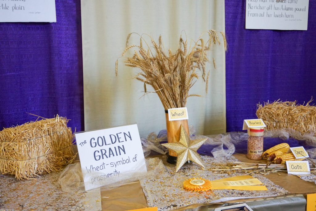 Grain Table at the Wayne County Fair in Palmyra