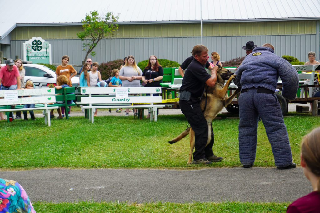 Wayne County Sheriff Dog Demonstration at the Wayne County Fair